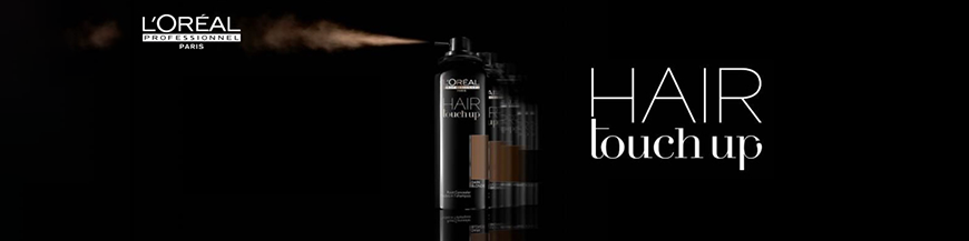 L'Oréal Hair Touch Up